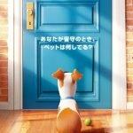 ペット【映画】の声優一覧!吹き替え版を観た感想とあらすじネタバレ