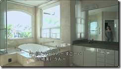 terrace house hawaii 1wa bathroom