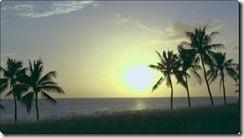 terrace house hawaii 1wa terracehouse4