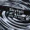 ONE OK ROCK(ワンオク) skyfallの収録曲は?感想超超超ヤバっ!