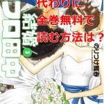 結婚アフロ田中の最新刊3巻を無料で読む方法は?漫画村の代わりに全巻無料で読む方法を確認した